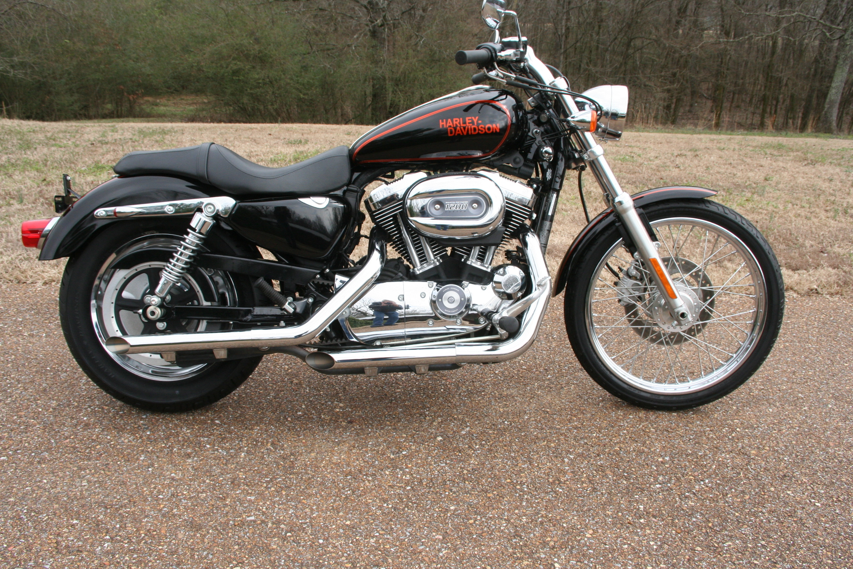 2009 harley davidson sportster 1200 custom for sale. Black Bedroom Furniture Sets. Home Design Ideas
